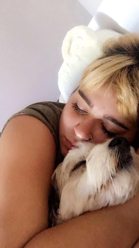 Antalya'da üniversite öğrencisinin köpeğini bulana ödül