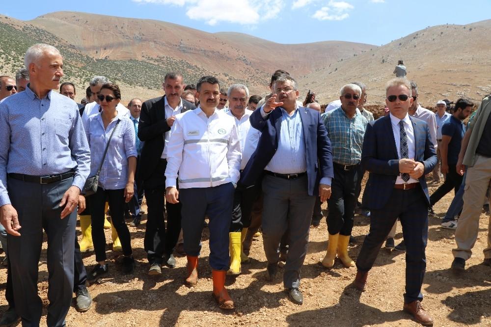 """Bakan Pakdemirli: """"Ordu'da ve Antalya'da üreticinin zararı devlet tarafından karşılanacak"""""""