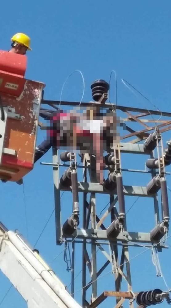 Elektrikçi, bakım yapmak istediği trafoda akıma kapıldı