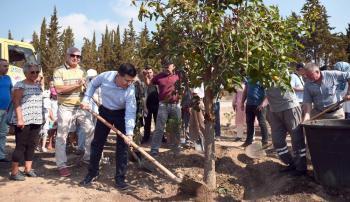 Kepez Belediyesi'Nden Dokuma Botanik'e barış fidanı