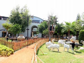 Manavgat kent müzesi açılıyor