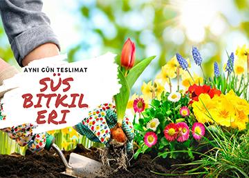 Yaz aylarının vazgeçilmezi, bahçe işleri!