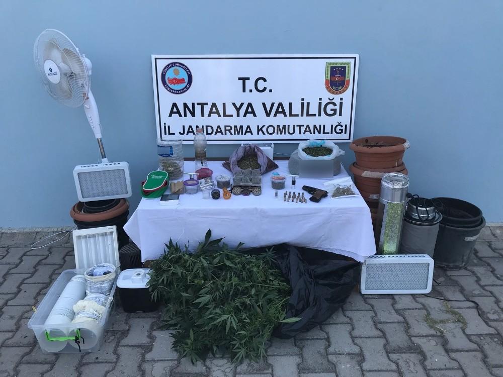 Alanya'da iki ayrı adrese uyuşturucu baskını