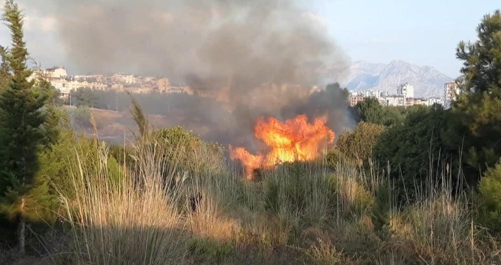 Antalya'da Konyaaltı sahiline yakın alanda orman yangını