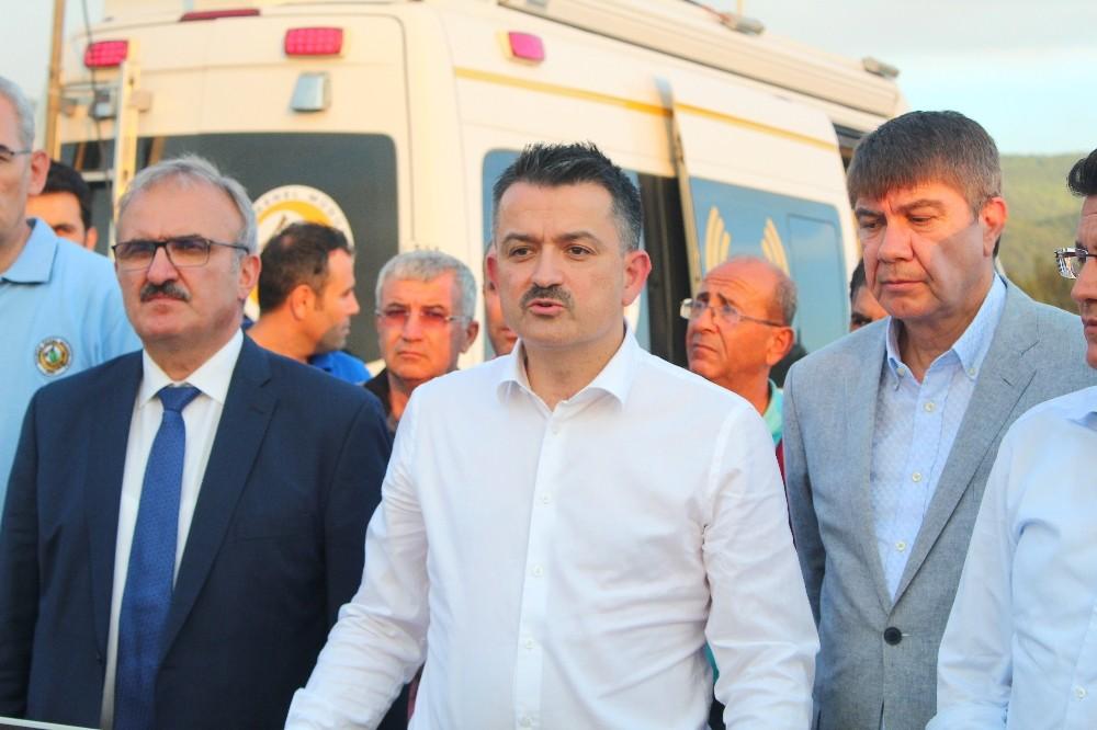 Bakan Pakdemirli'den Kumluca'daki yangına ilişkin açıklama