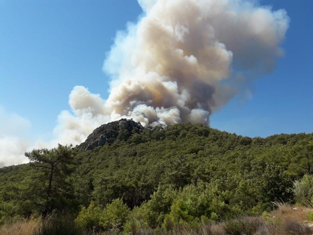 Kumluca'da ormanlık alanda yangın