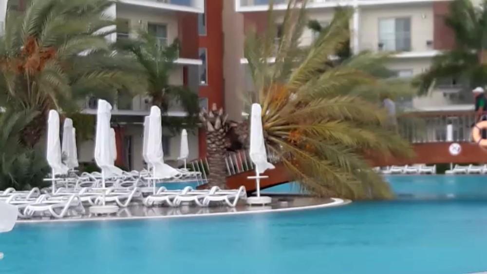 5 yıldızlı otel havuzundaki palmiye fırtınaya dayanamadı
