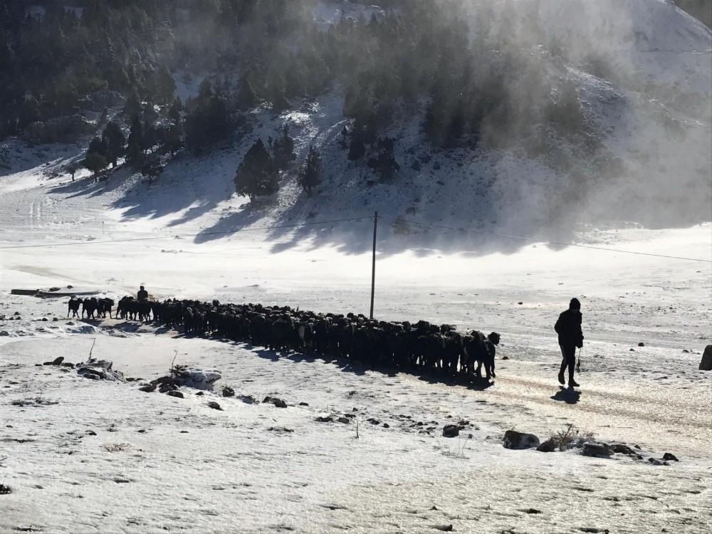 Antalya'da bin 825 rakımlı Alacabel'de kar keyfi