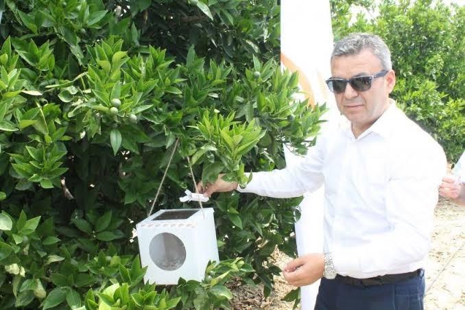 Antalya'da biyolojik mücadele çalışmaları