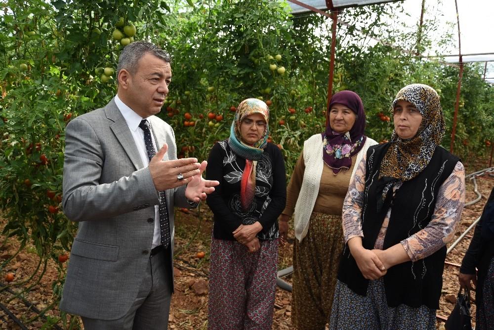 Antalya'da İyi Tarım Uygulama projesine destek