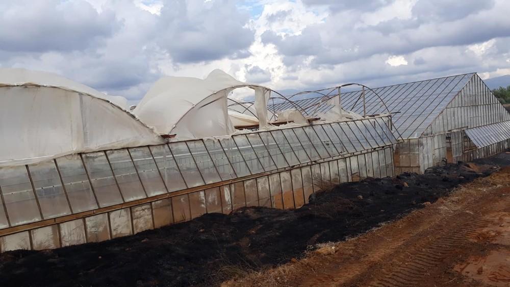 Antalya'da yangında seralar zarar gördü
