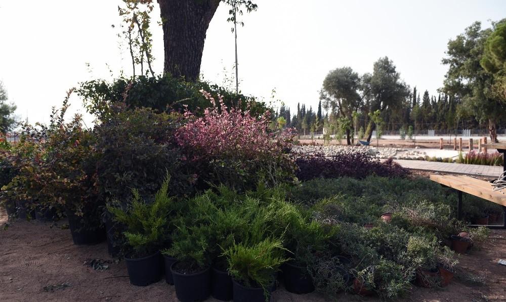 Dokuma'ya botanik bahçe kuruluyor