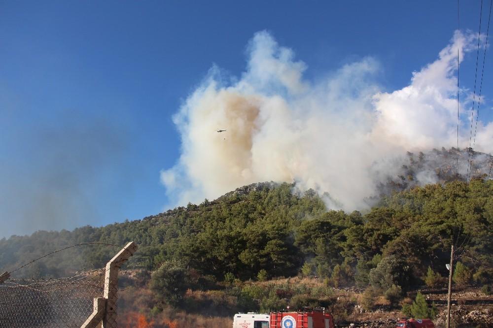 Kumluca'da eş zamanlı çıkan orman yangınları korkuttu