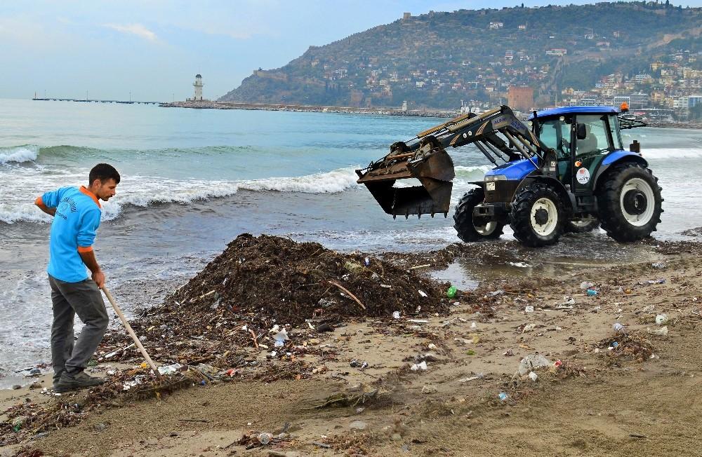 Alanya Belediyesi'nden sahili temizledi