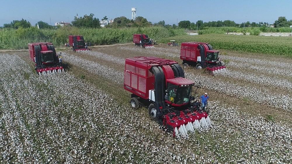 Antalya'da çiftçiye 72 milyon pamuk ödemesi yapıldı