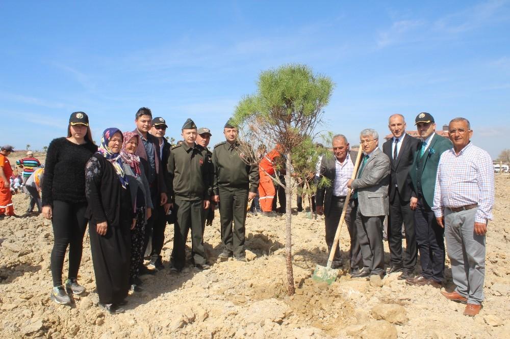Manavgat'ta Şehit Cumali Gür Hatıra Ormanı oluşturuldu