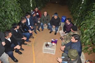 İl Tarım ve Orman Müdürlüğü Serada Don Nöbeti Tutan Üreticilere ziyaret